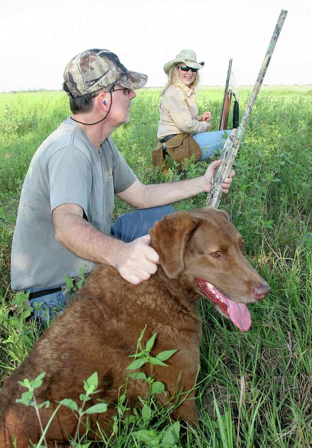 Texas hunting and fishing licenses for the 2015-16 fiscal year go on sale Saturday. With current licenses expiring Aug. 31, Texas wingshooters anticipating the Sept. 1 opening of dove season will need a new hunting license and state migratory game bird stamp before heading afield.   Houston Chronicle photo by Shannon Tompkins Photo: Picasa