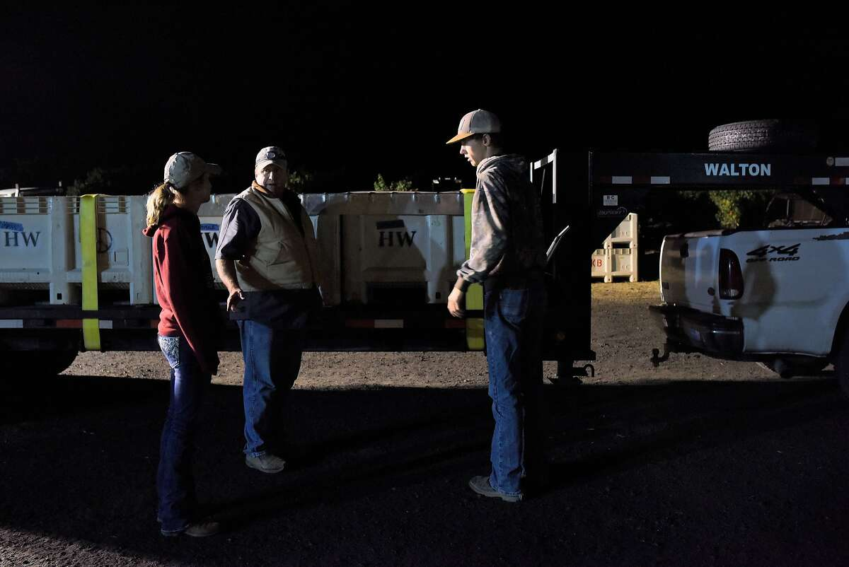 John Bucher, second from left, gives instructions to his daughter Hannah Bucher, left, and son Tony Klisura before delivering a truckload of pinot noir grapes to a winery during a nighttime harvest at Bucher Vineyard in Healdsburg, California, on August 14, 2015.