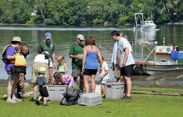 Visitors and volunteers gather around DEC experts to learn about the fish, crabs and other river life during the fourth annual Great Hudson River Estuary Fish Count at Peebles Island State Park Saturday, August 15, 2015 in Cohoes, NY.  (John Carl D'Annibale / Times Union) Photo: John Carl D'Annibale / 00032957A