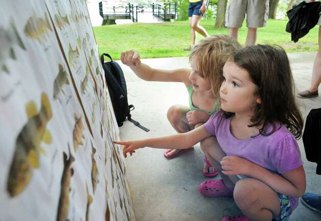 Five-year-olds Amelia Geurin, left, and Molly Quidort, both of Delmar, check out a fish chart before helping out at the fourth annual Great Hudson River Estuary Fish Count at Peebles Island State Park Saturday, August 15, 2015 in Cohoes, NY.  (John Carl D'Annibale / Times Union) Photo: John Carl D'Annibale / 00032957A