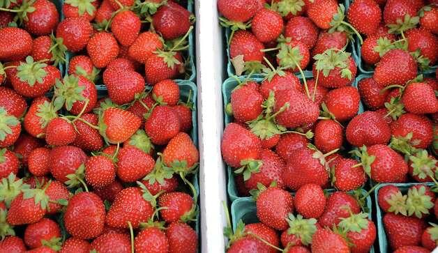 Fresh picked strawberries at Bowman Orchard on Thursday, Aug. 13, 2015 in Rexford, N.Y. (Lori Van Buren / Times Union) Photo: Lori Van Buren / 00032990A