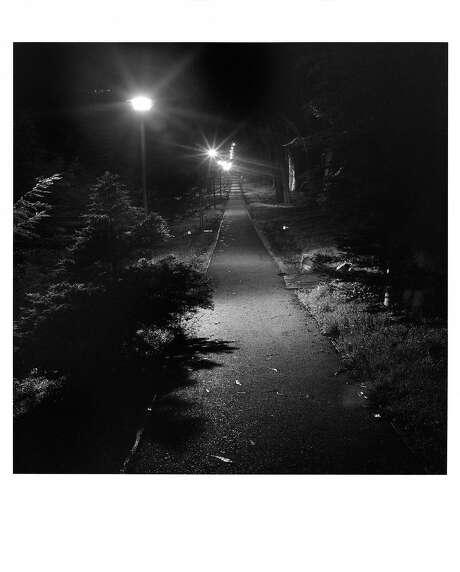 The Presidio, 6:03 to 7:03 a.m. Photo: Genaro Vavuris, Project 24 San Francisco