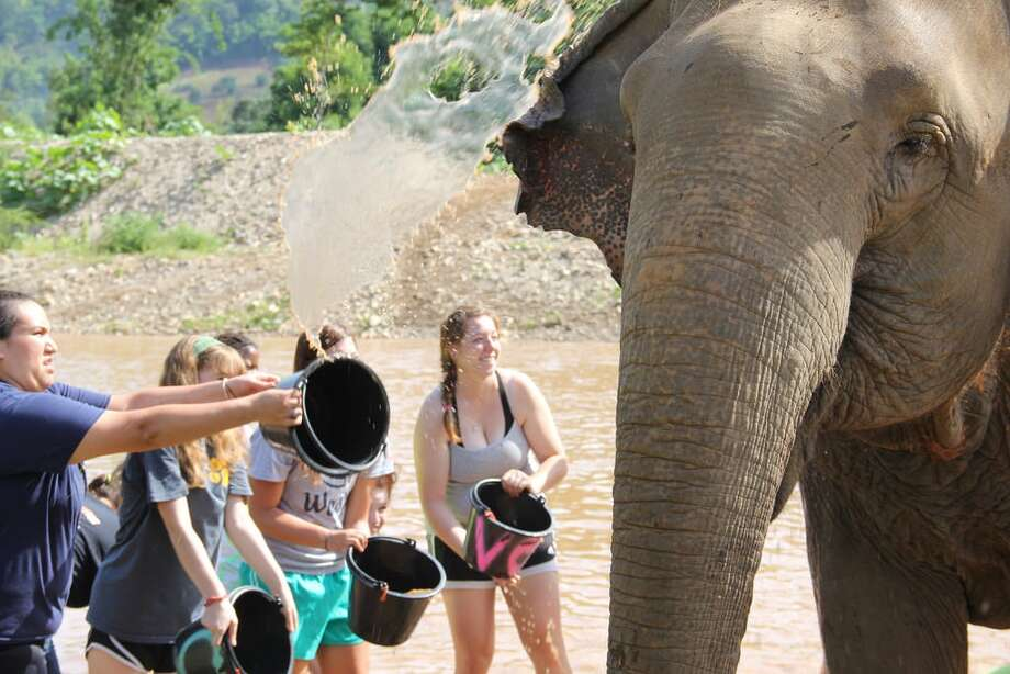Lydia De Leon, right, helps other students give a bath to an elephant during her summer trip with Loop Abroad, a program for teens who are interested in conservation and ecology. De Leon got to spend time with her favorite animal, the elephant. Photo: Courtesy