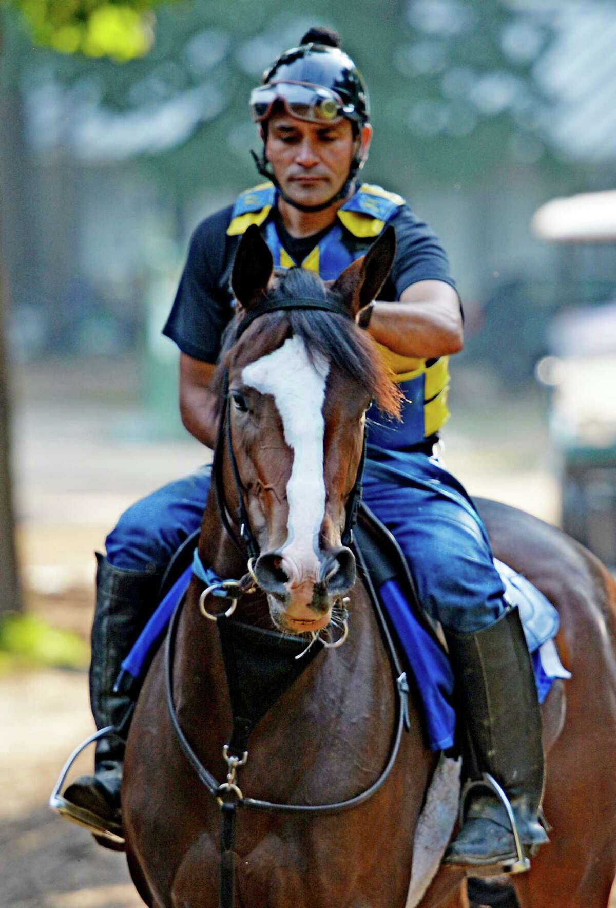 Trainer Rudy Rodriguez sits atop Flower Kisser, a two year old filly by Courageous Cat out of Bridesmade Monday morning Aug. 17, 2015 at the Saratoga Race Course in Saratoga Springs, N.Y. Flower Kisser will have her next start late in the Saratoga Race Meeting. (Skip Dickstein/Times Union)