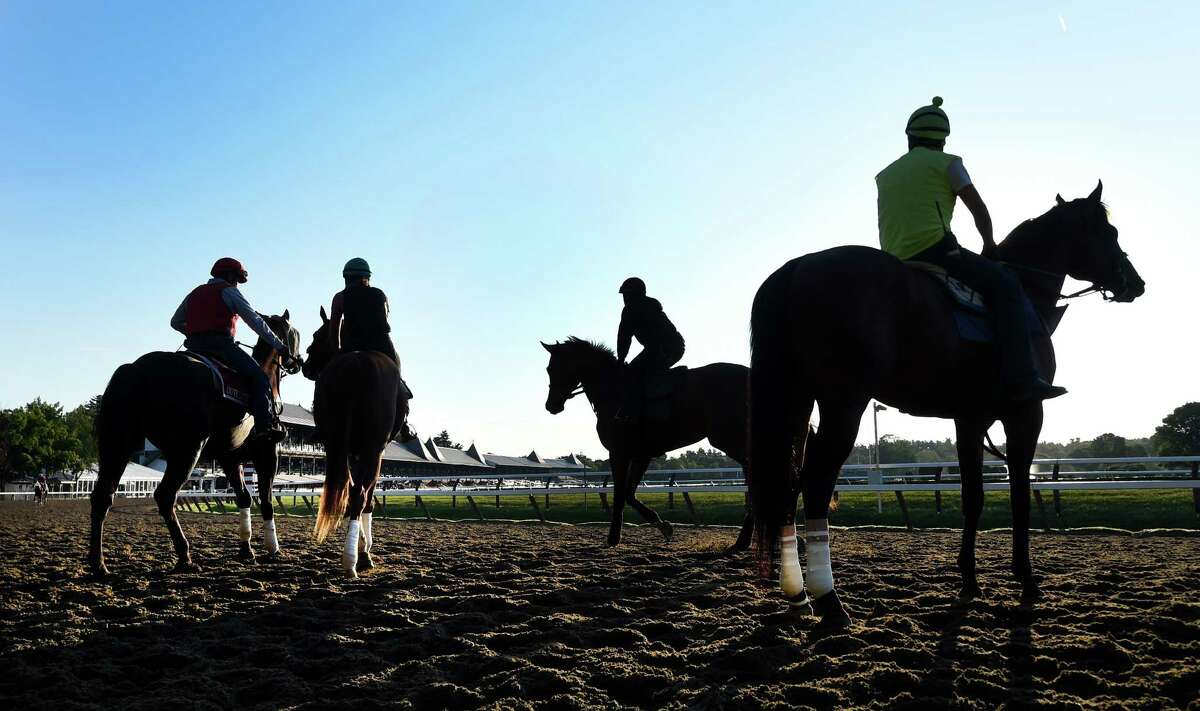Click through the slideshow to meet the real stars in Saratoga - the horses! The following horses have been featured as the Thoroughbred of the Day throughout the season in the Times Union's Saratoga Green section.