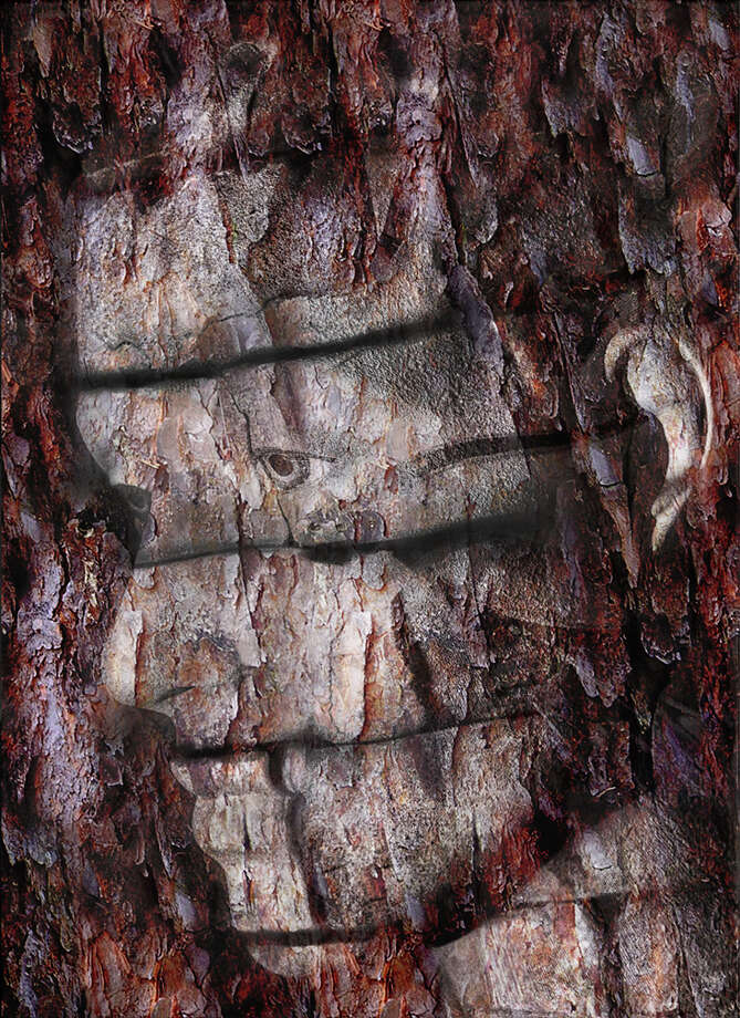 From his MetamorFaces series, Bernhard's Wood #8 blends natural and humanistic elements to create stunning visuals.