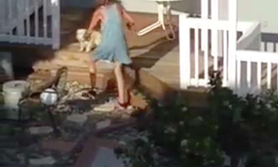 A video shows the owner of a dog sitting business in Burlingame grabbing a dog by the neck, slamming the animal to the ground and slapping it multiple times. Photo: Peninsula SPCA