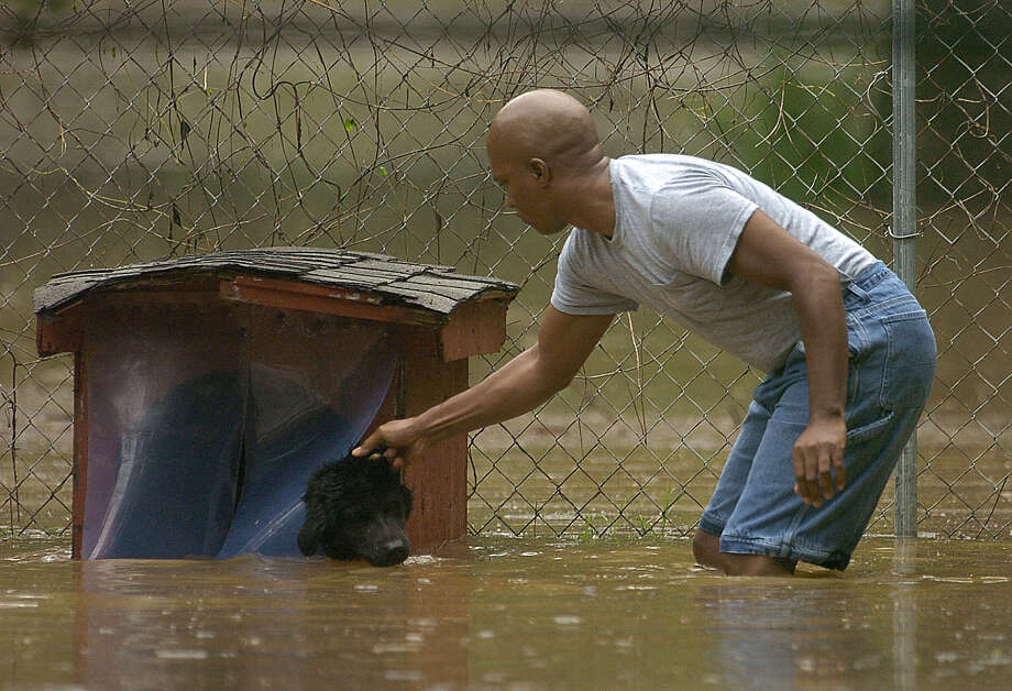 Mark Edmonds rescues his dog Odie from his flooded backyard in Hopkinsville, Ky.  Photo: DANNY VOWELL, AP / KENTUCKY NEW ERA