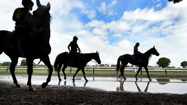 Horses walk near puddles near the main track of the Saratoga Race Course Friday morning during training hours Aug. 21, 2015 after overnight rains dampened the area.    (Skip Dickstein/Times Union) Photo: SKIP DICKSTEIN