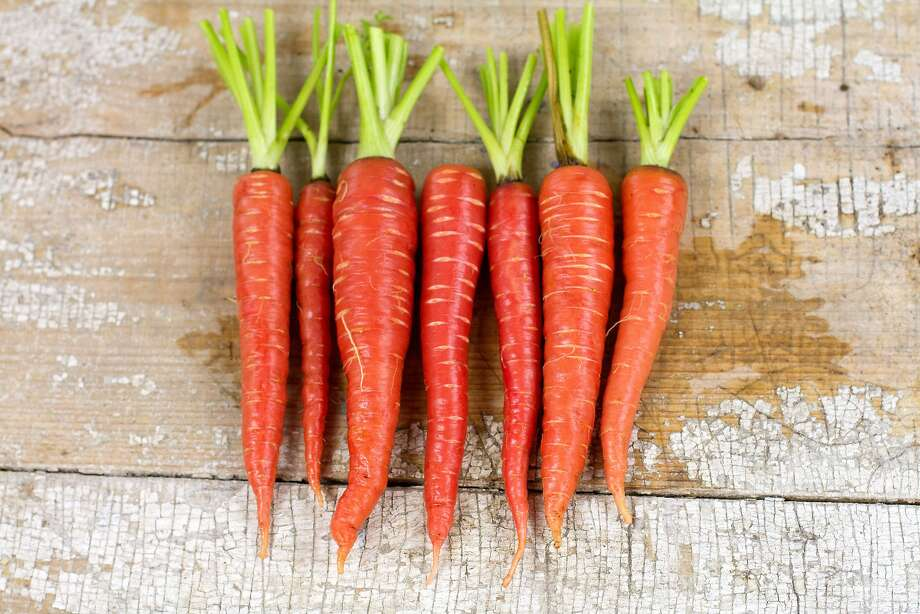 'Atomic Red' carrots are, indeed, a colorful, red hue. Photo: Baker Creek Heirloom Seeds, RareSeeds.com