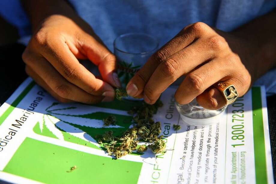 A participant organizes his buds during Hempfest, the annual cannabis freedom festival at Myrtle Edwards Park on the Seattle waterfront. The three day festival is an annual Seattle tradition that started in 1991. Photographed on Sunday, August 16, 2015.