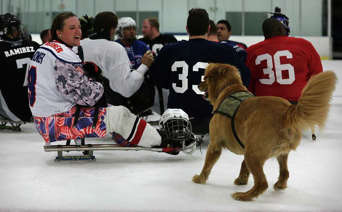 Christy Gardner, of the Women's National Team, plays with her dog Moxie as she anticipates Gardner throwing a puck to fetch. The San Antonio Rampage sled hockey team is made up of wounded warriors and is sponsored by the Rampage and Operation Comfort. They practiced at the Ice and Gold Center at Northwoods on Thursday, August 13, 2015.