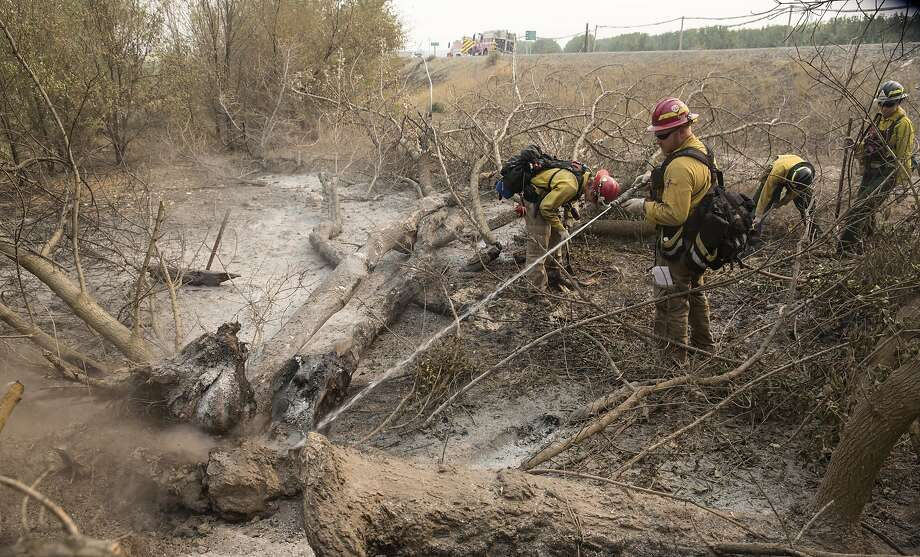 Firefighters extinguish hotpots after a wildfire, part of the Okanogan Complex, swept through the area on August 22, 2015 near Okanogan, Washington. The Okanogan Complex fires have burned more than 127,000 acres. Photo: Stephen Brashear, Getty Images