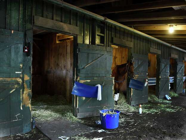 Trainer John Terranova's barn on the main track at the Saratoga Race Course Monday morning Aug. 24, 2015, in Saratoga Springs, N.Y. Triple Crown winner American Pharoah will occupy stall 11, open door, when he arrives on Wednesday.  (Skip Dickstein/Times Union) Photo: SKIP DICKSTEIN