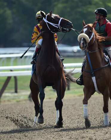 Jess's Dream, the offspring of two champions, Curlin the sire and Rachel Alexandra the dam acts up in the post parade of the sixth race on the card Monday Aug. 24, 2015 at the Saratoga Race Course  in Saratoga Springs, N.Y.      (Skip Dickstein/Times Union) Photo: SKIP DICKSTEIN