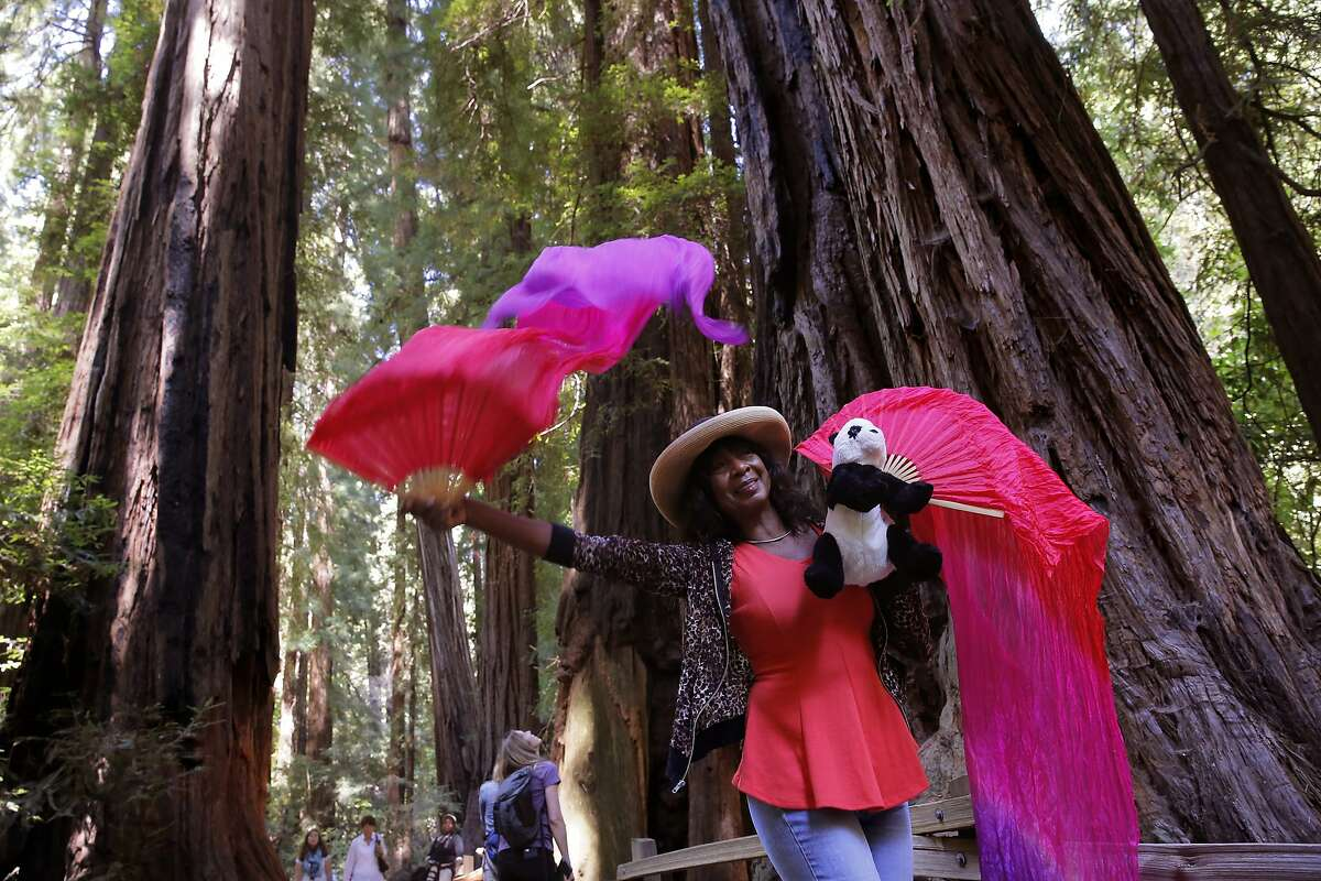 Claudia Porter of Florida brought along her fan veils during her visit to Muir Woods, in Mill Valley, Calif., on Tues. August 25, 2015. A new Stanford study is helping researchers to better understand Lyme and tick-borne diseases in the Bay Area. Not only are tick-borne infections more common and complex than expected, but the risk is higher in redwood forests than previously believed.