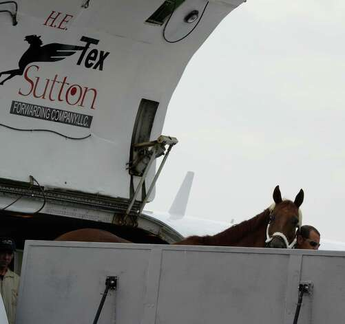 Funny Cide, who returns to his home state, takes a quick look over the ramp while exiting the H.E. Sutton transport aircraft which arrived at Albany International Airport Thursday morning, Aug. 1, 2013, in Colonie, N.Y. (Skip Dickstein/Times Union archive) Photo: SKIP DICKSTEIN