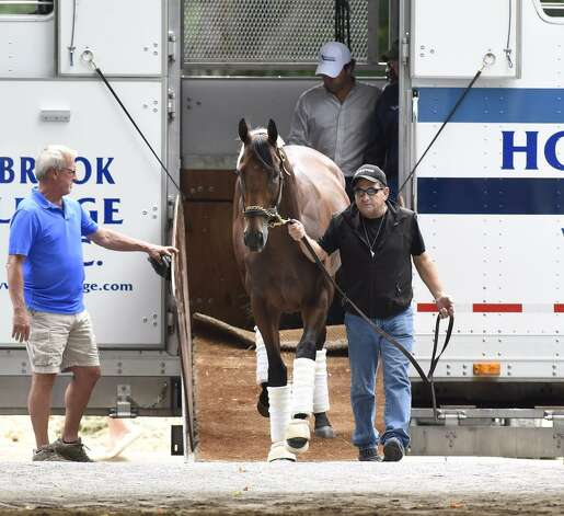 American Pharoah arrives at Saratoga Race Course on Wednesday, three days before he is expected to run in the Travers Stakes. (Skip Dickstein / Times Union)