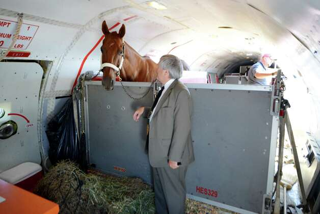 Jack Knowlton is reunited with Kentucky Derby and Preakness winner Funny Cide, who flew out with Triple Crown winner and Travers hopeful American Pharoah Wednesday, Aug. 26, 2015, at Albany International Airport in Albany, N.Y. (Will Waldron/Times Union) Photo: WW / 00033098A