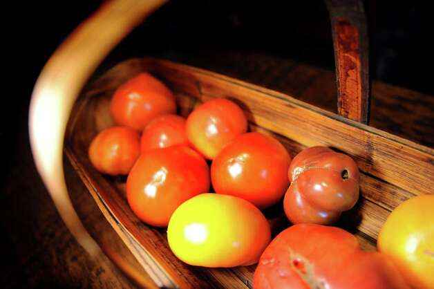 Homegrown tomatoes are a staple this time of year for Philip Morris on Wednesday, Aug. 12, 2015, at his home in Rotterdam, N.Y. (Cindy Schultz / Times Union) Photo: Cindy Schultz / 10032874A