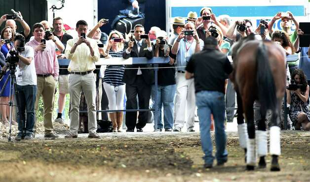 Numerous cameras were seen at the arrival of American Pharoah at the barn area at the Saratoga Race Course Wednesday afternoon Aug. 26, 2015 in Saratoga Springs, N.Y.       (Skip Dickstein/Times Union) Photo: SKIP DICKSTEIN
