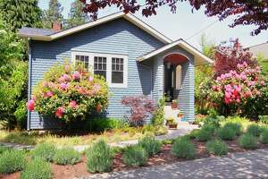 Open houses: Great gardens, lawns - Photo