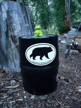 Backpackers are required to use bear-proof food canisters in the Yosemite Wilderness, and several other wilderness areas in the high Sierra -- but bears have recently started stealing them even if they can't get the food out