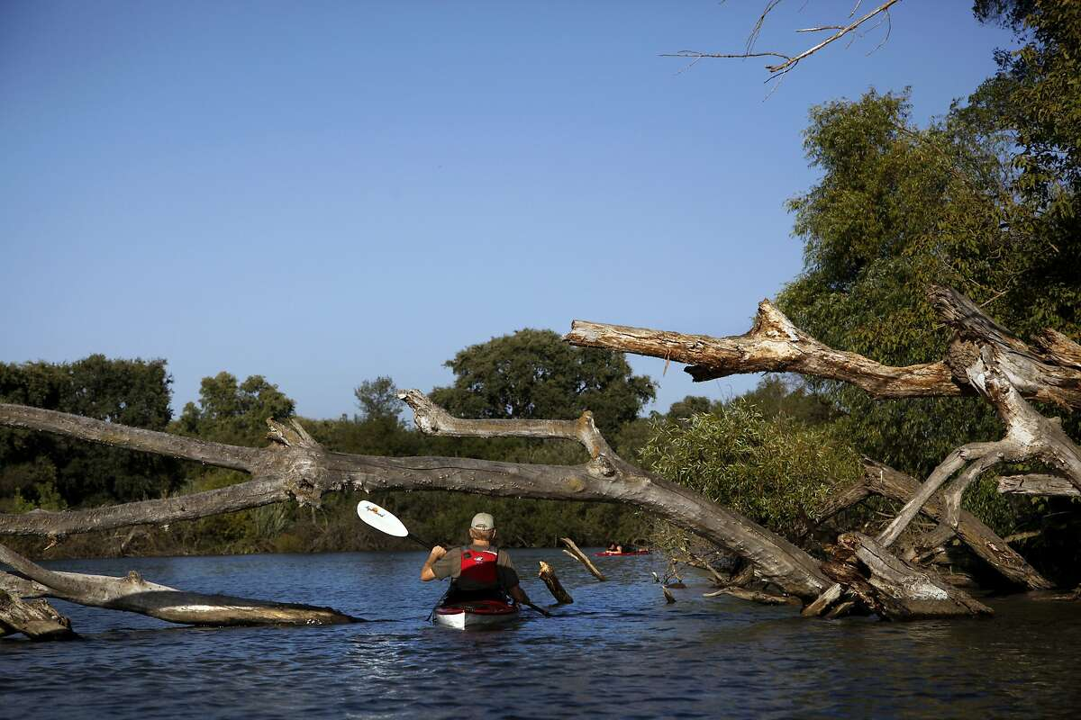 Sunset kayak trips by Headwaters Kayak start at Lodi Lake and explore the Mokelumne River in Lodi, Calif., on Wednesday, August 19, 2015.