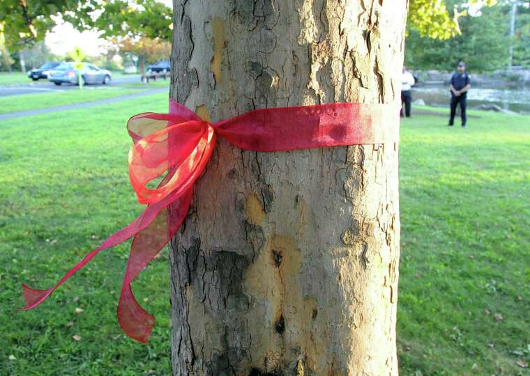 a red ribbon tied around a tree during the memorial