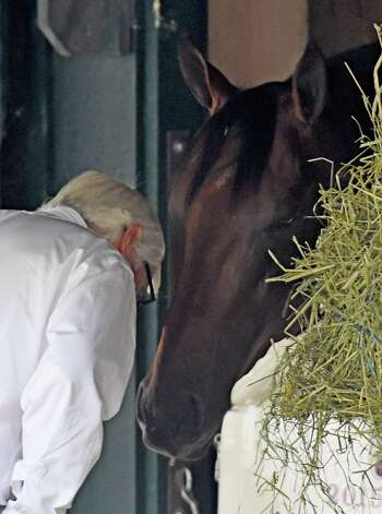 Trainer Bob Baffert enjoys a quiet moment with American Pharoah outside his stall Thursday evening Aug. 27, 2015 in the barn area of the Saratoga Race Course in Saratoga Springs, N.Y.    (Skip Dickstein/Times Union) Photo: SKIP DICKSTEIN