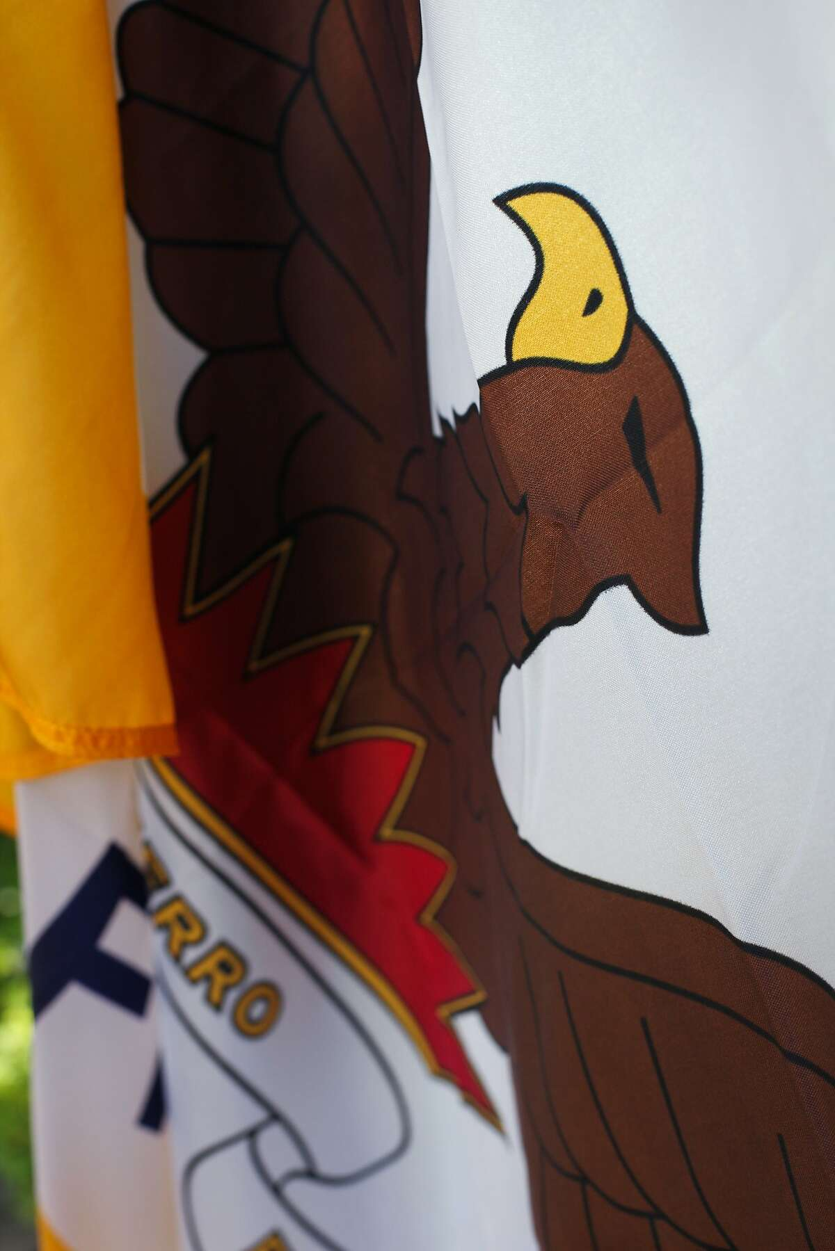 A detail of the rising phoenix rising from flames on the San Francisco flag in Kensington, California on August 27, 2015. Roman Mars, host and creator of design radio show 99% Invisible, has a campaign to change San Francisco's flag.