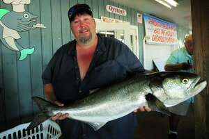This weekend, catch the biggest bluefish, win $25,000 - Photo