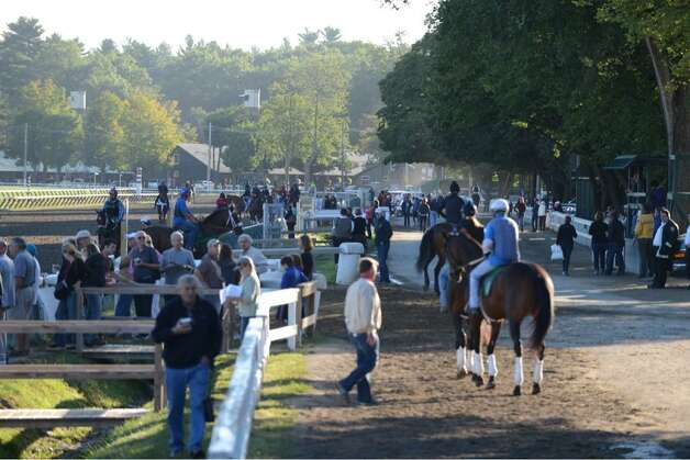 Friday morning was a busy one at Saratoga Race Course as people flooded the track for Travers Stakes workouts and the prospect of seeing Triple Crown winner American Pharoah. (Will Waldron / Times Union)