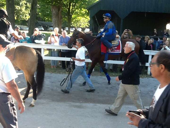American Pharoah heads to the track to exercise Friday morning. Thousands of people crowded the trac