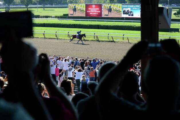 Spectators stand to watch Triple Crown winner American Pharoah on his morning work out run Friday, Aug. 28, 2015, at Saratoga Race Course in Saratoga Springs, N.Y. Pharoah will compete in Saturday's Travers Stakes. (Will Waldron/Times Union) Photo: WW / 00033155B
