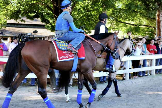 Fans capture the moment as Triple Crown winner American Pharoah, center, is escorted to the racetrack for a morning workout with stablemate Smokey and assistant trainer Jim Barnes, right, on Friday, Aug. 28, 2015, at Saratoga Race Course in Saratoga Springs, N.Y. American Pharoah will compete in Saturday's Travers Stakes. (Cindy Schultz / Times Union) Photo: Cindy Schultz