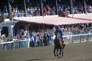 American Pharoah heavily favored in Travers Stakes - Photo