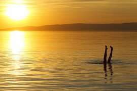A woman swims during sunset at Lake Balaton, as seen from Fonyod, 148 kms southwest of Budapest, Hungary, Friday, August 28, 2015. (Gyorgy Varga/MTI via AP)