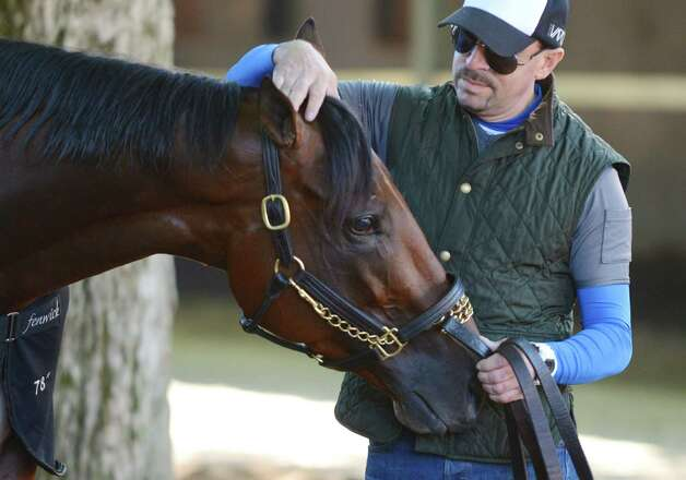 Exercise rider George Alvarez adjusts the forelocks of Triple Crown winner American Pharoah following his morning work out Friday, Aug. 28, 2015, at Saratoga Race Course in Saratoga Springs, N.Y. Pharoah will compete in Saturday's Travers Stakes. (Will Waldron/Times Union) Photo: WW / 00033155B
