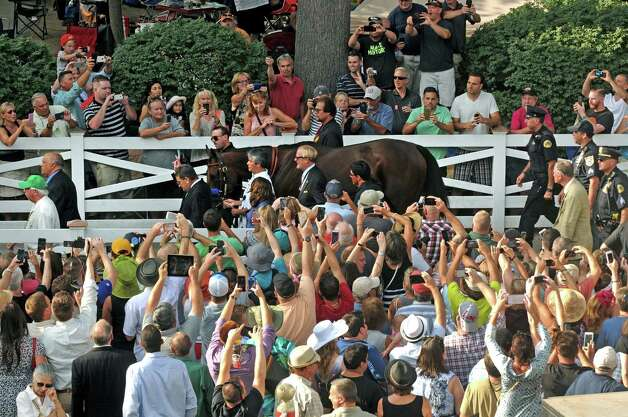 The crowd works at getting their photographs of American Pharoah before the146th running of theTravers at Saratoga Race Course on Saturday Aug. 29, 2015 in Saratoga Springs, N.Y.  (Michael P. Farrell/Times Union) Photo: Michael P. Farrell / 00033156A