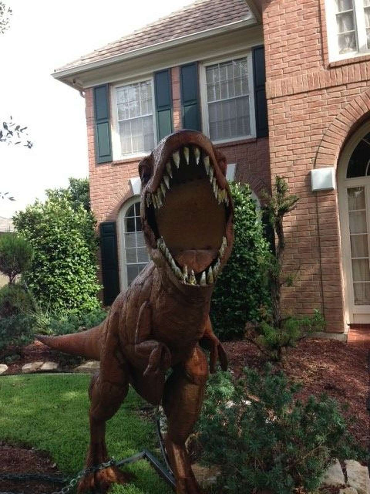 A Sugar Land woman, Nancy Hentschel, who has been told to remove two hulking dinosaur replicas from her front yard said the fearsome figures will go.