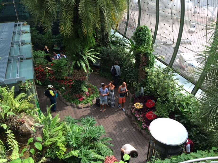FLY LIKE A BUTTERFLYChangi Airport is the only airport in the world with a butterfly garden. It comprises two levels, with a waterfall, flora and informative displays, along with more than 1,000 butterflies. Photo: Jody Schmal / Houston Chronicle