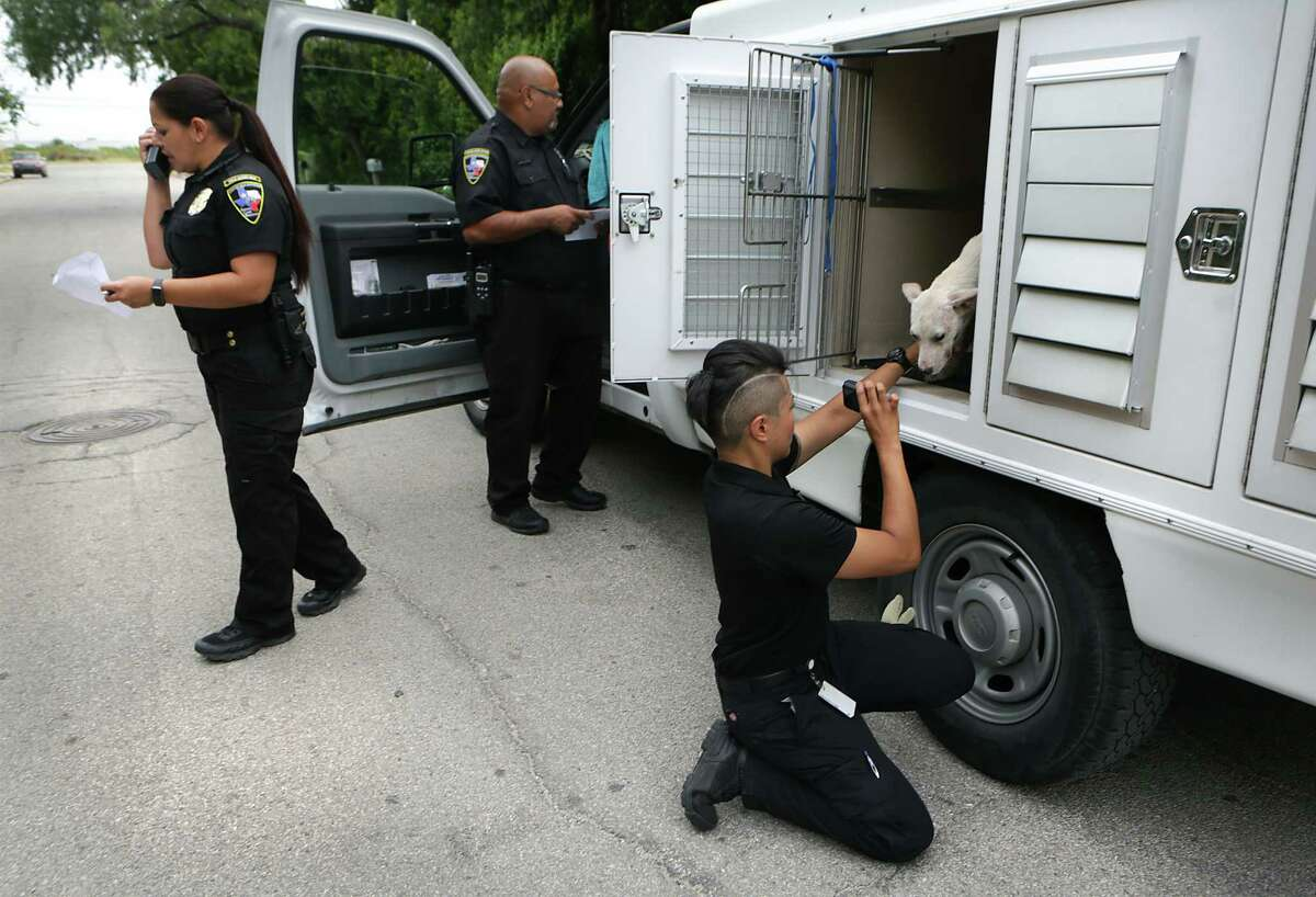 Animal Care Services Officer Bernadette Obregon, right, took a photo of a stray dog Friday as Field Supervisor Aimee DeContreras, left, talked to other officers during a block walk in neighborhoods on the West Side of San Antonio to distribute flyers in order to educate residents about animal care.