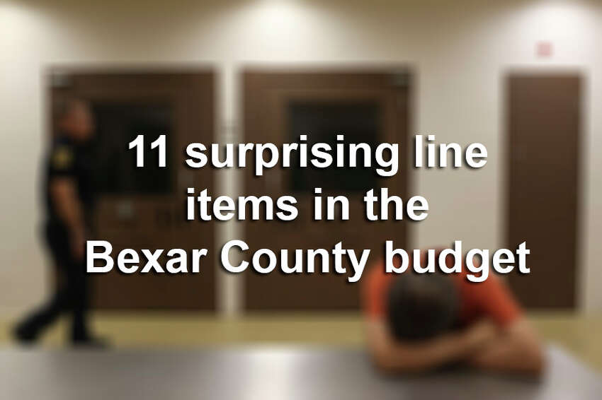 Click through the slideshow above to see some interesting entries in the Bexar County budget.