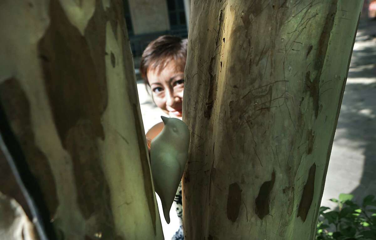 Jennifer Ling Datchuk, pottery instructor at The Southwest School of Art, hides a piece of art, a ceramic bird, in a tree at the school on Tuesday, Sept. 1, 2015, participating in World Art Drop Day with other local artists hiding some of their art pieces around town, like a scavenger hunt or geocaching.