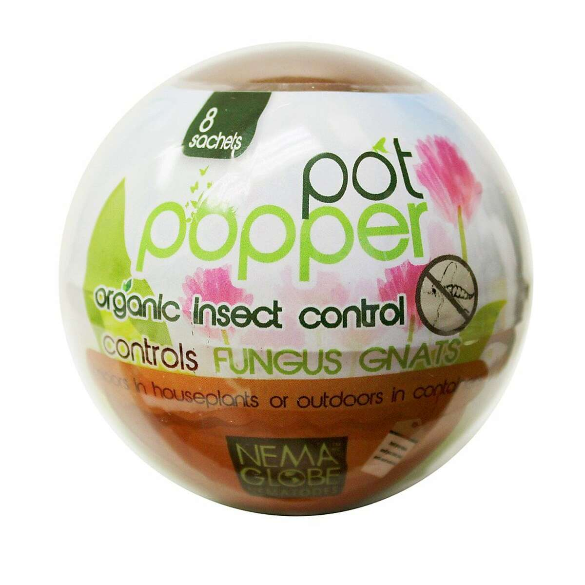This ball-shaped package contains nematodes to combat annoying black gnats in container plants.