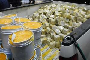 Texas border auhtorities find more than a ton of marijuana hidden in mango pulp - Photo