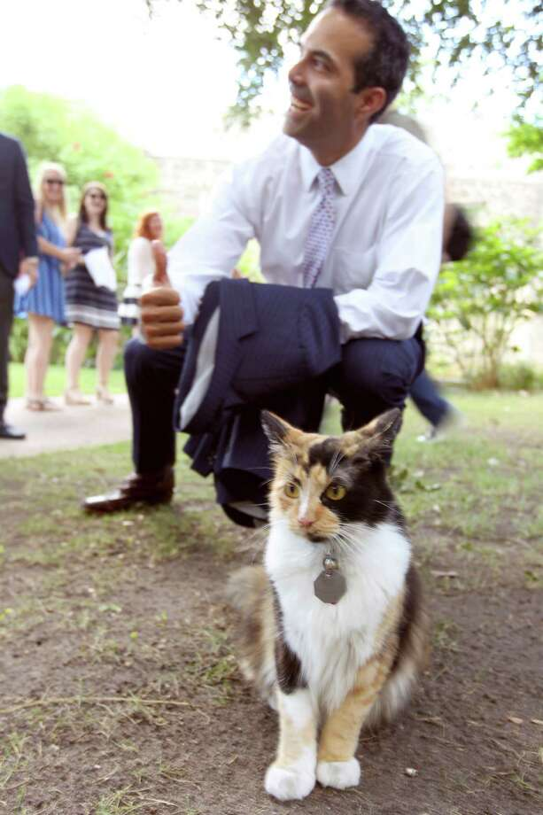 Texas Land Commissioner George P. Bush poses Wednesday with Bella the Alamo Cat while on a tour of the Alamo grounds. Bush was in San Antonio to celebrate the $31.5 million the General Land Office received from the Legislature to help preserve and develop the Alamo. Photo: William Luther /San Antonio Express-News / © 2015 San Antonio Express-News