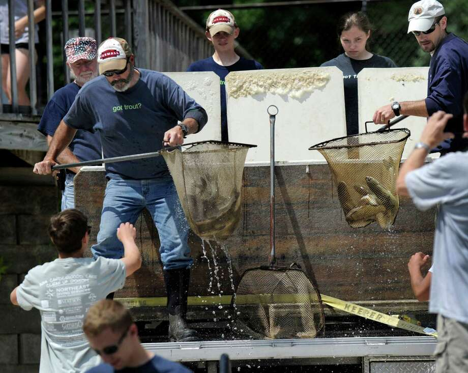 File photo of sterile grass carp delivered to Candlewood Lake on June 26 to combat Eurasian watermilfoil. The carp were purchased using a state grant that is available again. Photo: Carol Kaliff / Hearst Connecticut Media / The News-Times