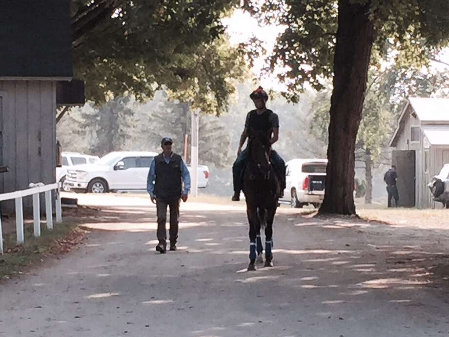 As the days of summer — and the Saratoga meet — dwindle down to a precious few, there is nothing like a leisurely stroll under the trees to help pass the time. That's what trainer John Shirreffs, left, was doing on Wednesday morning at the Oklahoma Training Track. Here, he walks alongside his 3-year-old Smart Transition on the way back to the barn. Smart Transition last raced in the Travers, finishing seventh. Shirreffs said he doesn't have any concrete plans for the  next start for Smart Transition. (Tim Wilkin / Times Union)